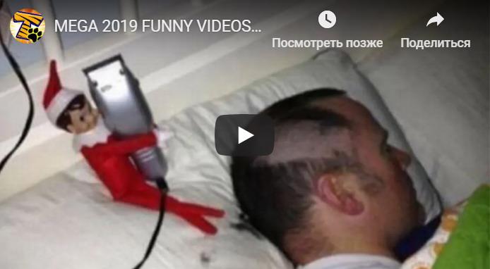Несколько убойных видео прикола!