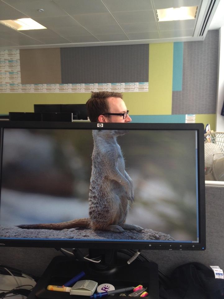 Картинки, картинки про офис смешные