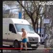 Прикольные видео, чумачечая весна