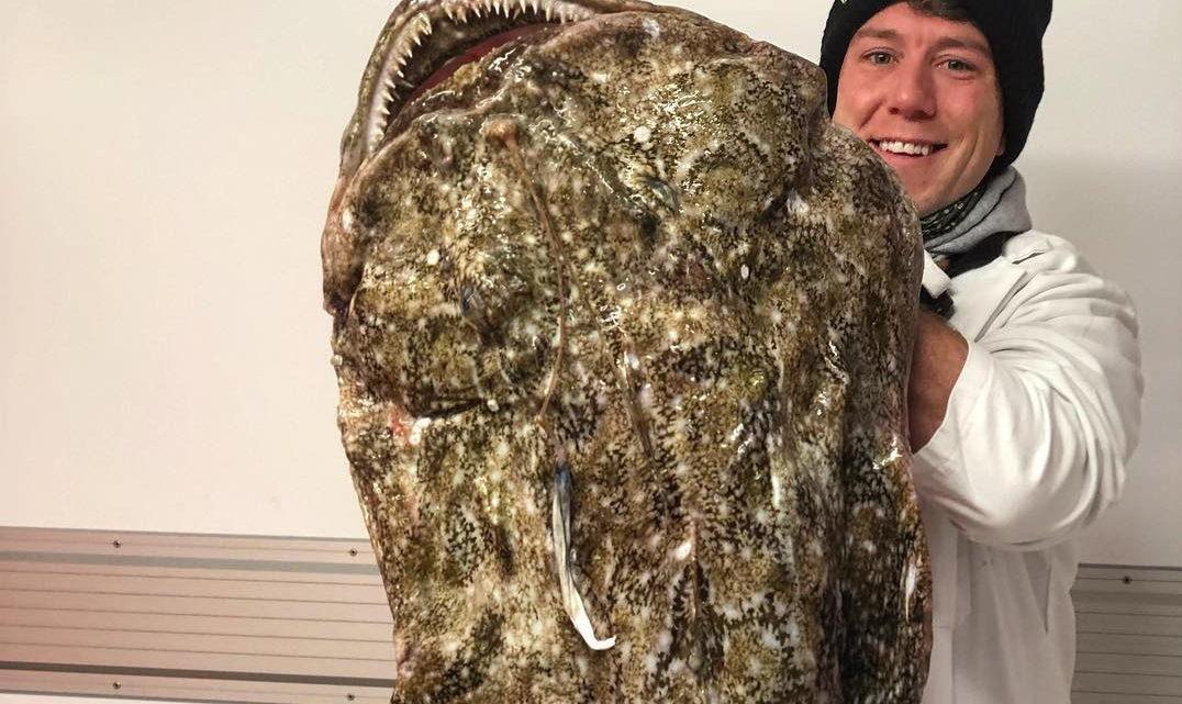 Охотник на чудовищ: британский рыбак и его удивительные уловы
