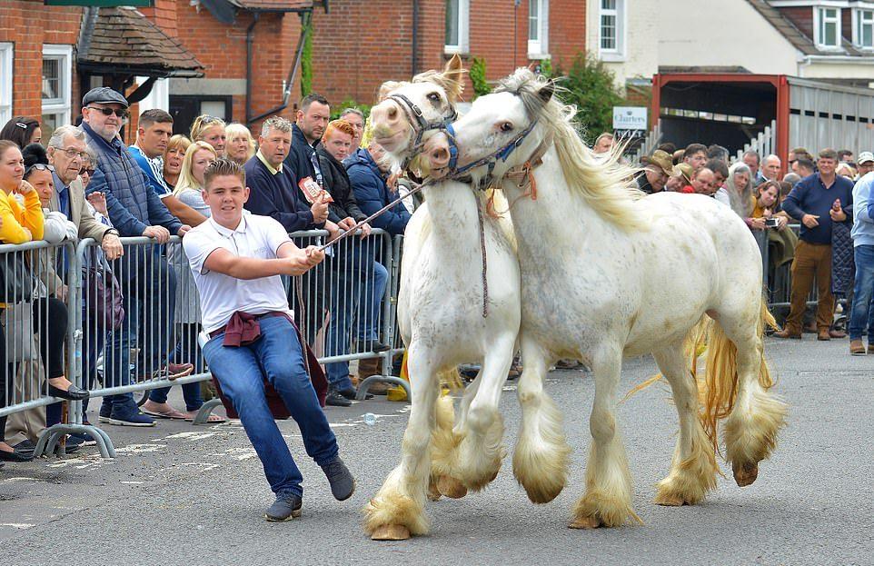 Ежегодная конная ярмарка в Уикхеме (41 фото)