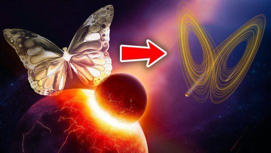 «Эффект бабочки» — примеры из реальной жизни