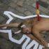 Полуголый протест против фестиваля Сан-Фермин в Памплоне