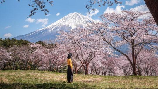 Красивые Японские пейзажи и снимки Хироки Фурукавы (25 фото)