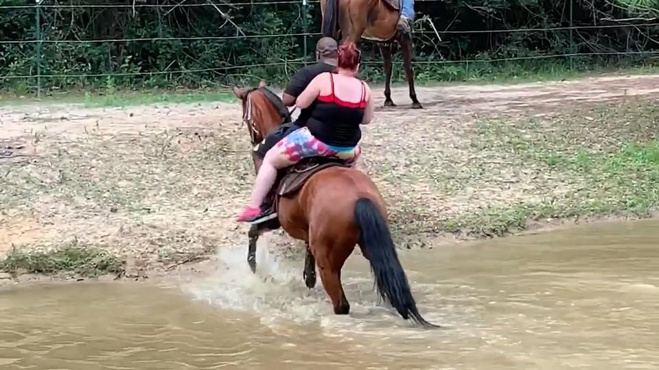 Забавное падение туристов с лошади (16 фото)
