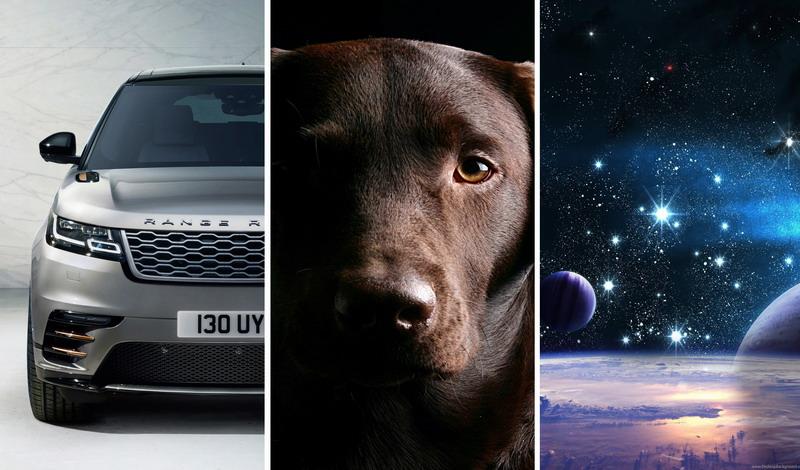 Природа, авто, животные на телефон (31 обоев)