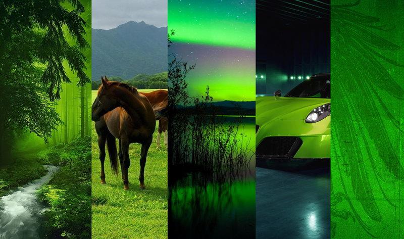 Лучшие зеленые обои на телефон
