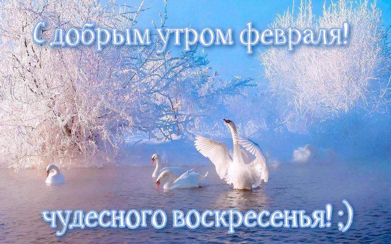 Доброе утро февраля — бесплатные картинки