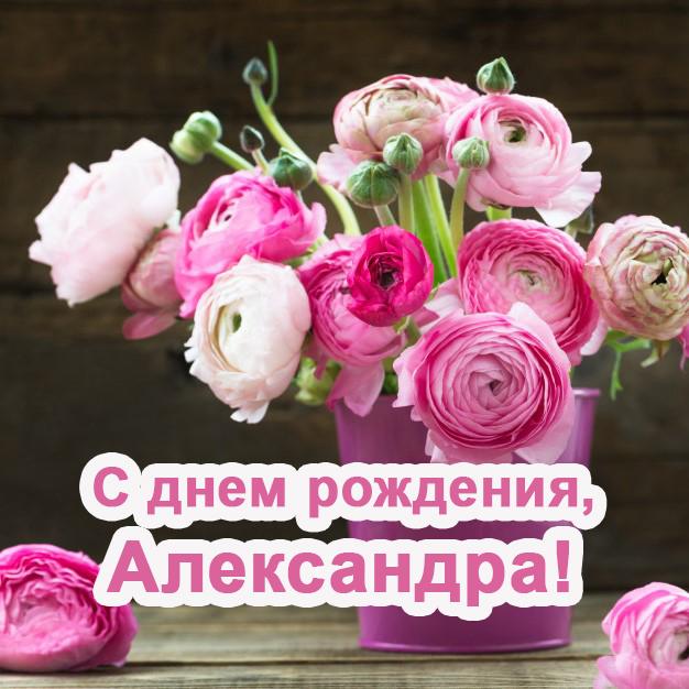 С днем рождения Александра — картинки и открытки женщине