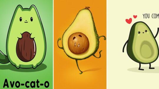 Обои на телефон — авокадо