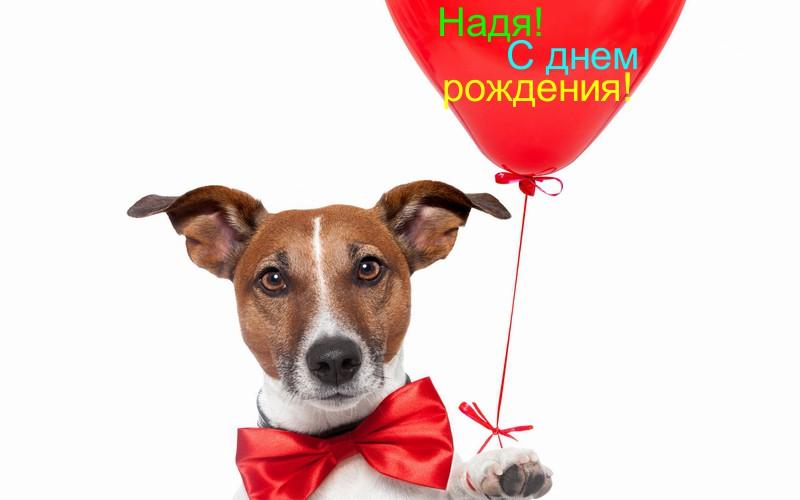 С днем рождения Надя — картинки и открытки